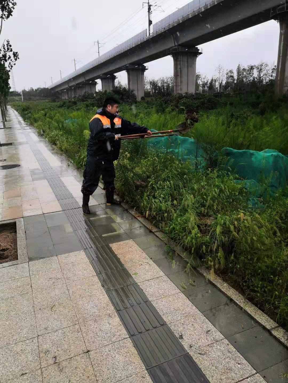 """京沪高铁济南维管段多举措全力应对超强台风""""利奇马"""""""